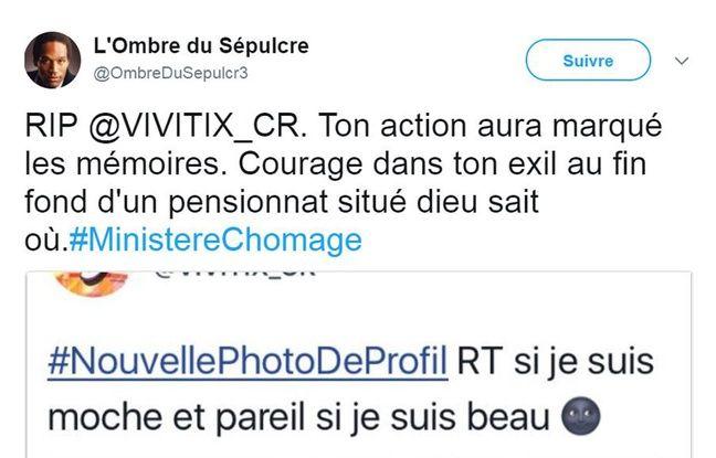 Le détournement du compte Twitter du ministère de la Culture a fait réagir les internautes