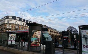Strasbourg sur le pont pour protéger les cygnes de ses lignes de tram