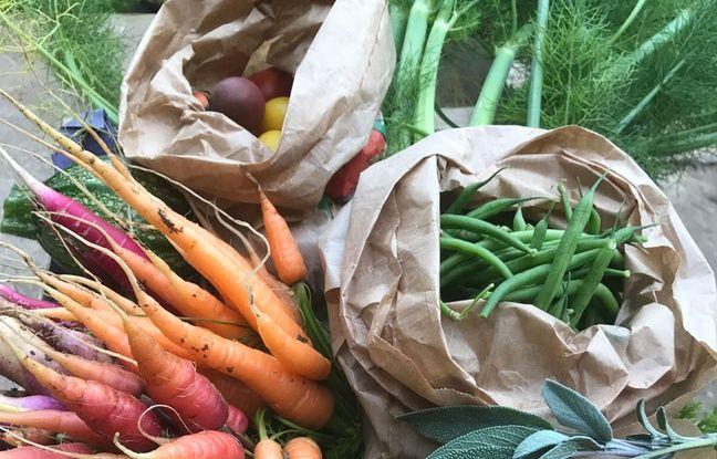Les légumes bio de Julien Magniez sont issus de sa production située dans le Pas-de-Calais