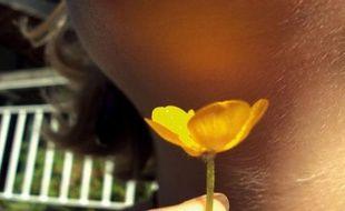 """""""T'aimes le beurre !"""": un jeu enfantin consistant à brandir un bouton-d'or sous le menton d'un camarade avant d'affirmer que le reflet sur la peau """"prouve"""" qu'il l'aime a été élucidé mercredi par des scientifiques de l'université de Cambridge."""