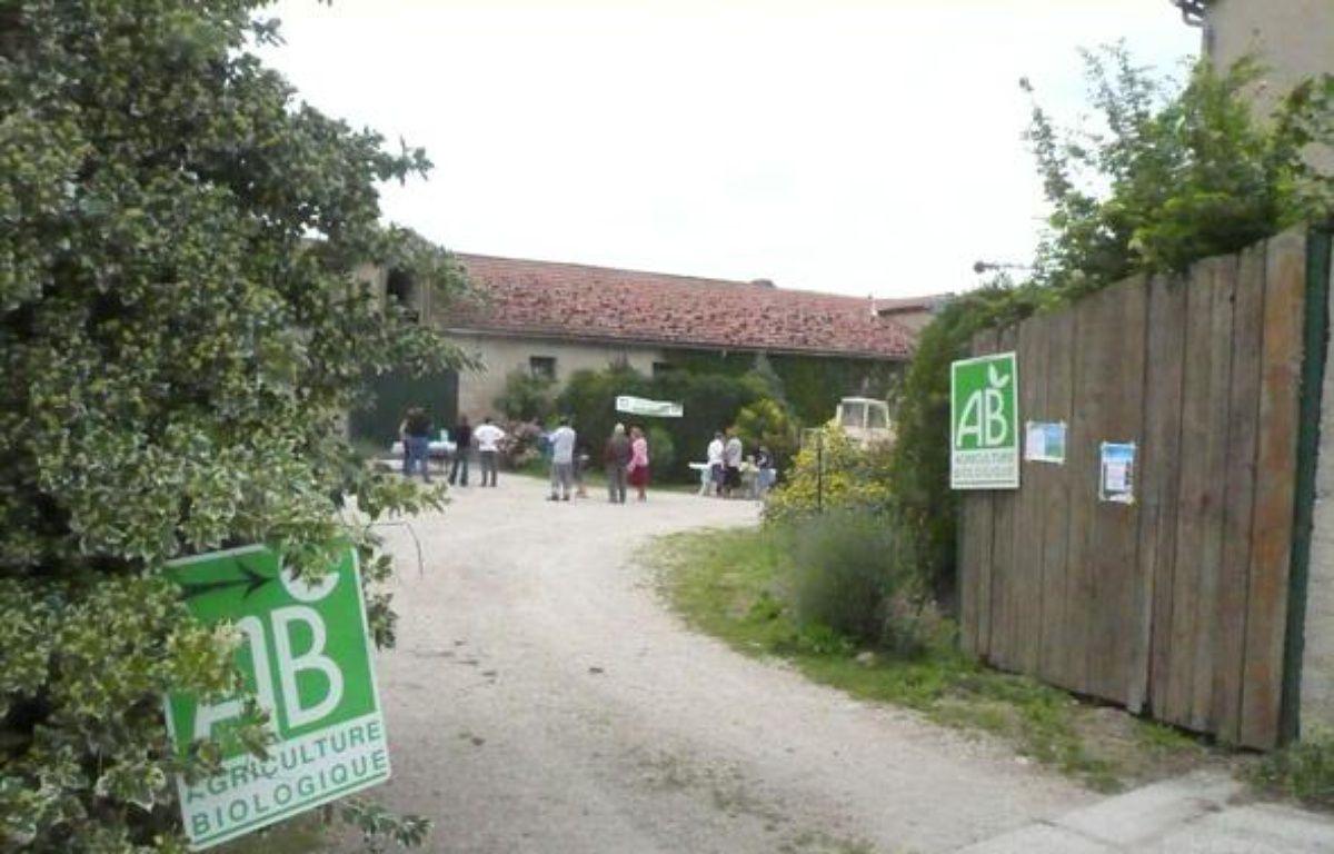 La ferme de poules pondeuses de Marc Chauvin en Seine et Marne. – Audrey Chauvet