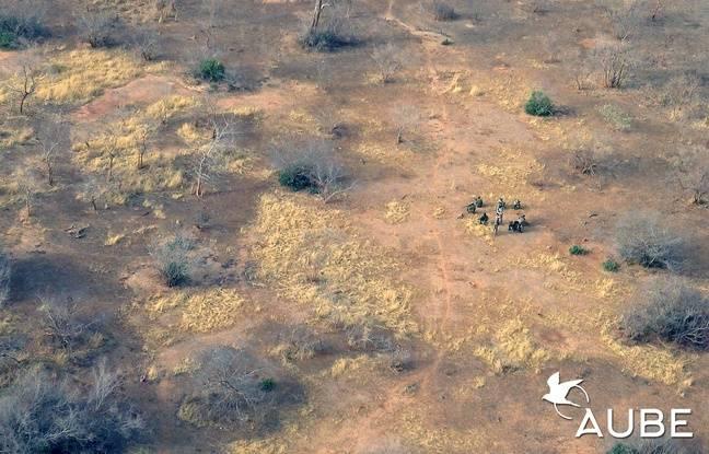 C'est dans une réserve naturelle entouré de rangers que l'Alsacien s'est rendu en Afrique.