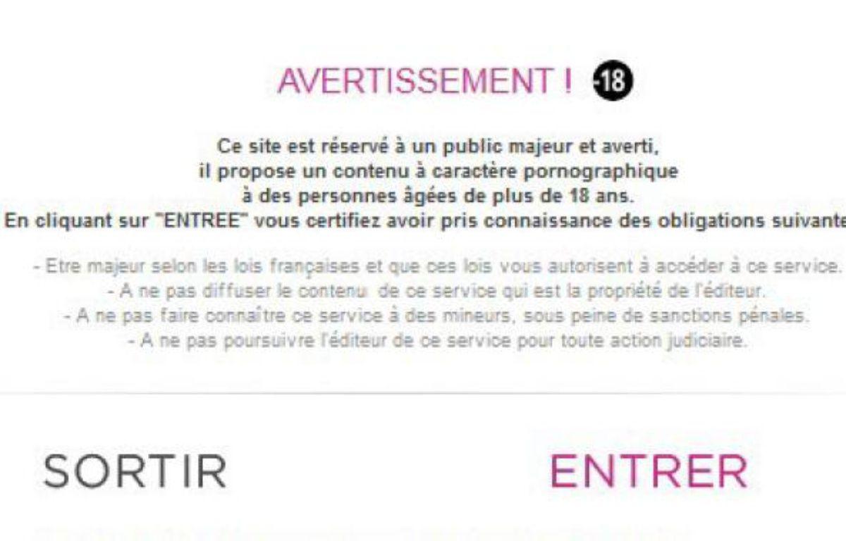 Capture d'écran: Avertissement précédant l'entrée sur un site pornographique. – 20MINUTES.FR