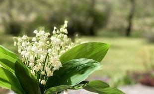 Le muguet est un porte-bonheur et le symbole du printemps.