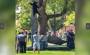 . La chute, immortalisée par un photographe de l'Université du Colorado est disgracieuse, mais elle est assez drôle.