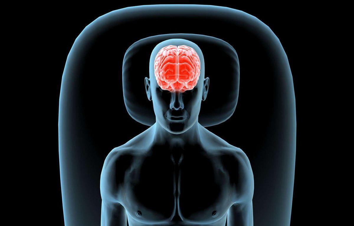 Illustration: le cerveau humain. –  Purestock/SIPA