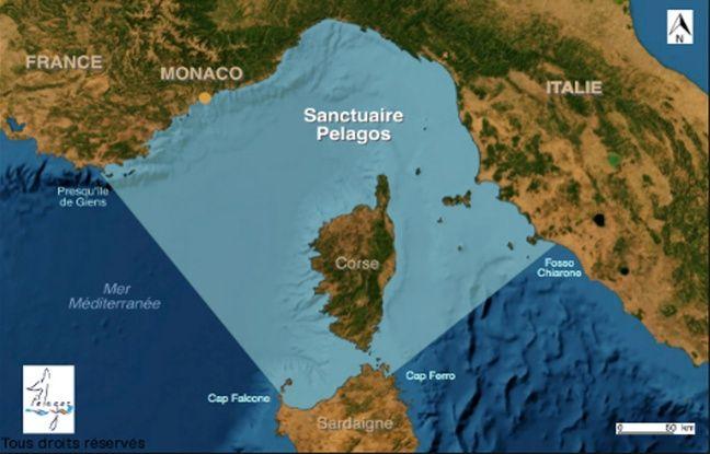 Carte du sanctuaire Pélagos en mer Méditerrannée.
