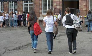 Lorraine: Après les vers, ce sont des puces qui envahissent un lycée de Toul (illustration)