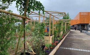 L'installation végétale éphémère à Hautepierre. Strasbourg le 8 juin 2021.