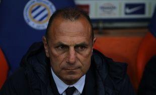 Montpellier / Guingamp : Michel Der Zakarian.