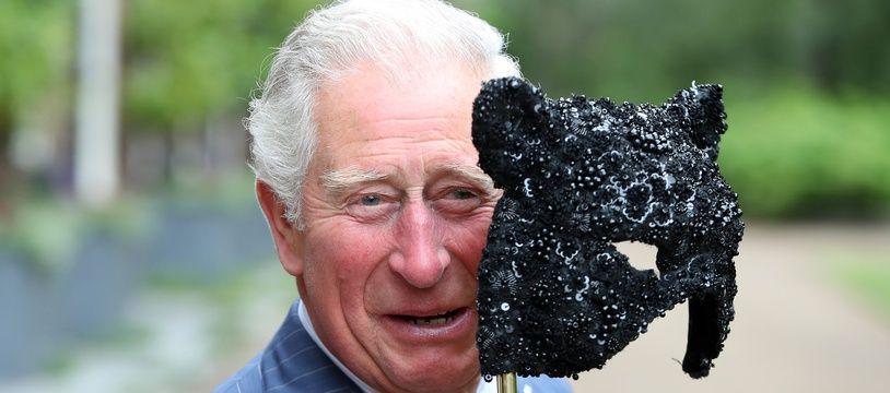 Le prince Charles, futur agent secret ?