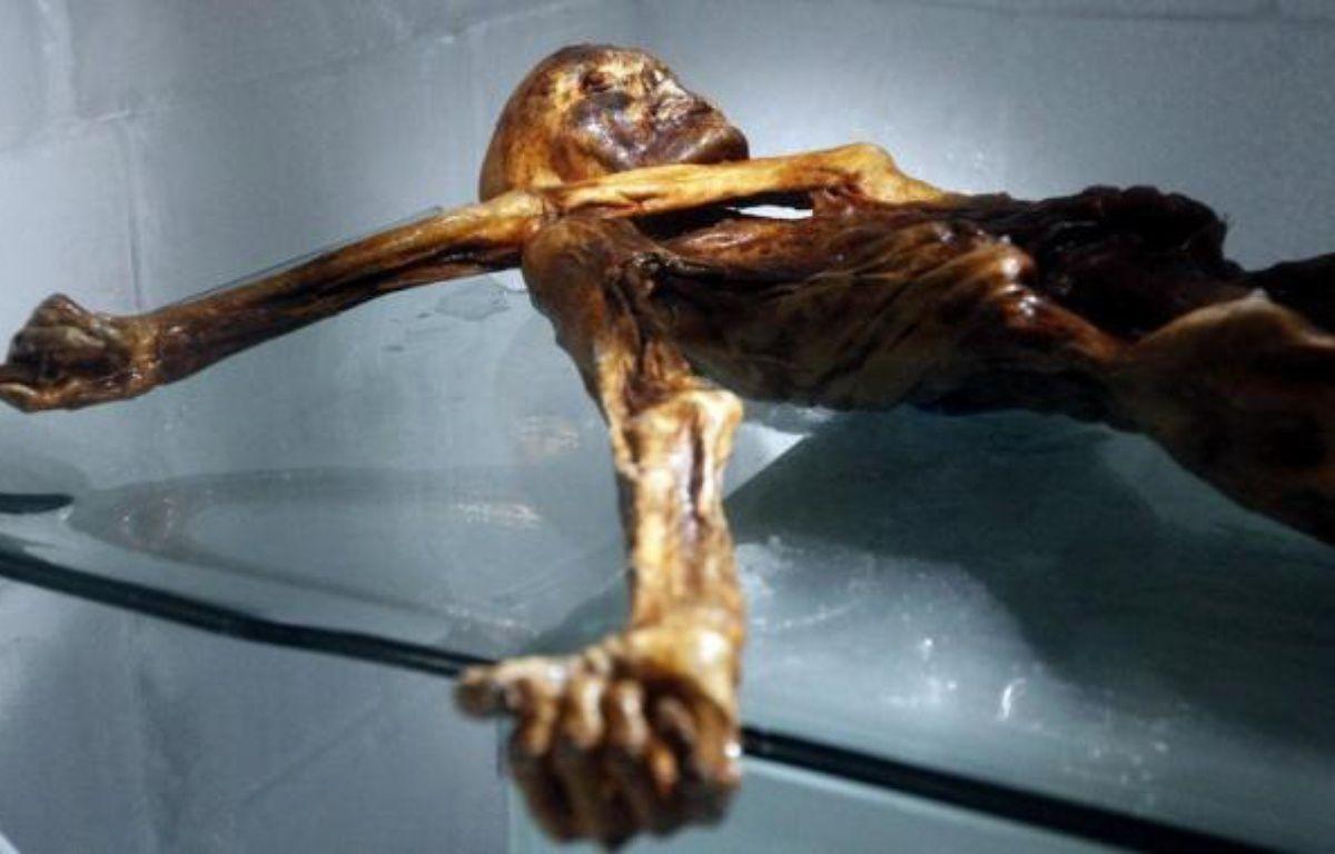 L'homme des glaces Ötzi, dont la dépouille momifiée fut découverte il y a 21 ans dans un glacier alpin, souffrait d'une prédisposition aux maladies cardio-vasculaires, selon une nouvelle étude. – Andrea Solero afp.com
