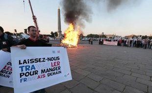 """""""Laissez-nous travailler pour manger français demain"""", demandent les agriculteurs réunis sur la place de la Concorde, à Paris, le 24 juin 2014"""