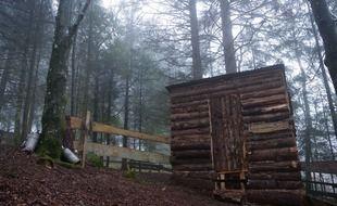 « Forestscape » est organisé sur un terrain de 30 ares avec une partie de forêt.