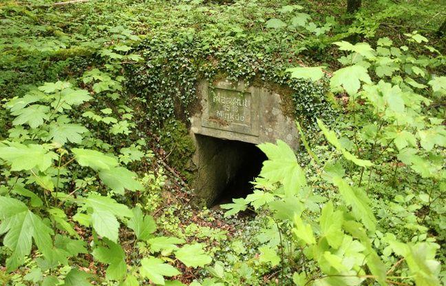Un abri allemand dissimulé sous les arbustes en forêt de Verdun, le 17 mai 2016.