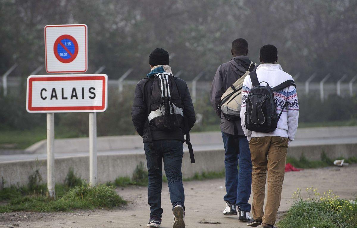 Trois jeunes migrants à Calais, le 23 octobre 2016. – SIPA