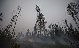 563 feux de forêts ont été recensés au Canada durant l'été 2018.