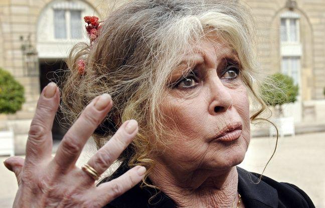 Défense des animaux: Brigitte Bardot demande à Emmanuel Macron un «miracle» de Noël