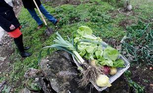 """La métropole de Lyon lance une """"stratégie alimentaire"""" pour que ses habitants mangent plus sainement et pour relocaliser les productions locales. (illustration"""