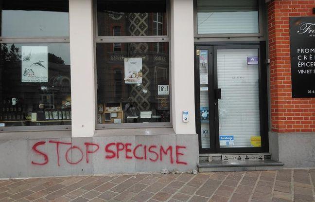 Nord: Cette fois, c'est une fromagerie qui a été vandalisée au nom de l'anti-spécisme