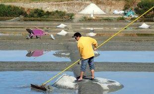 Le sel de Guérande, produit dans l'ouest de la France, est désormais protégé et reconnu par l'Indication géographique protégée (IGP) au sein de toute l'Union européenne.
