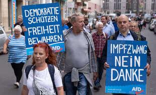Manifestants de l'AFD en Allemagne.