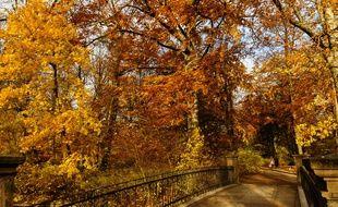 Promenade d'automne dans les jardins de Frederiksberg, Copenhague Danemark en novembre 2014
