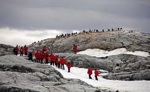 Touristes et manchots papous sur l'ile Petermann, en Antarctique, en 2009.