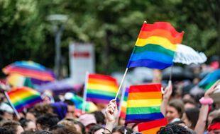La Gay Pride, en 2019, à Lyon (illustration)