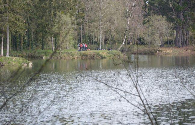L'étang de la Petite Perelle, à Saint-Jacques-de-la-Lande, a servi de terrain d'enquête dans le cadre du projet lucioles.
