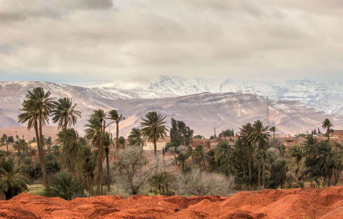 Phénomène climatique très rare, de la neige tombe sur la ville de Ain Sefra  (Algérie) dans le désert du Sahara, le 21 janvier 2017. – Photography/Shutterstoc/SIPA