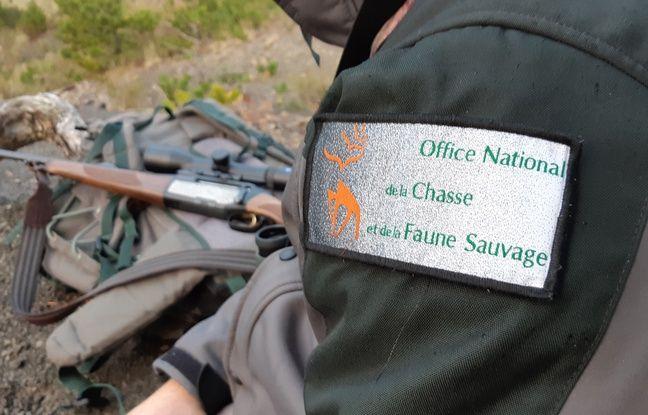 Les agents de l'ONCFS sont habilités pour tirer les loups qui menacent des toupeaux.