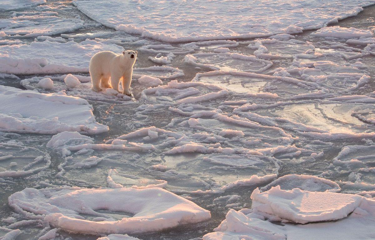 La fonte du permafrost en Arctique libère du gaz hilarant et réchauffant – SOLENT NEWS/SIPA