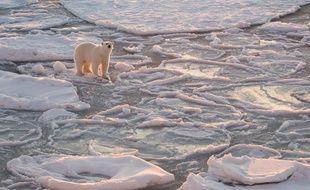La fonte du permafrost en Arctique libère du gaz hilarant et réchauffant