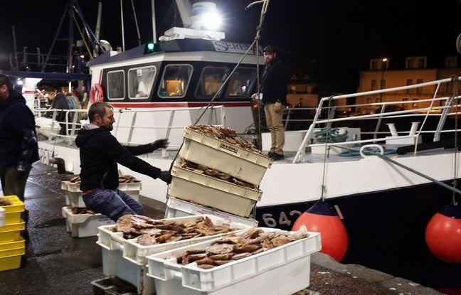 648x415 bateau peche port bessin normandie