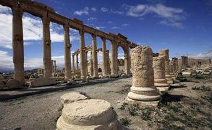 Une partie de l'ancienne oasis de Palmyre, à 215 km au nord-est de Damas, désertée par les touristes, le 14 mars 2014