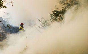 Des incendies dont l'origine n'est pas connue, se poursuivent ce mardi 25 juillet 2017 en Corse et dans le Sud-Est de la France, particulièrement dans le Var, balayé par des vents violents pour la deuxième journée consécutive.