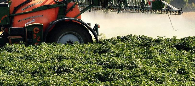 Une machine agricole en train de répandre des pesticides (image d'illustration).