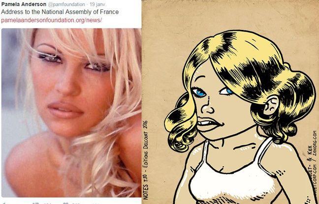 Pamela Anderson façon «Bouletmaton» - Photomontagne 20MINUTES