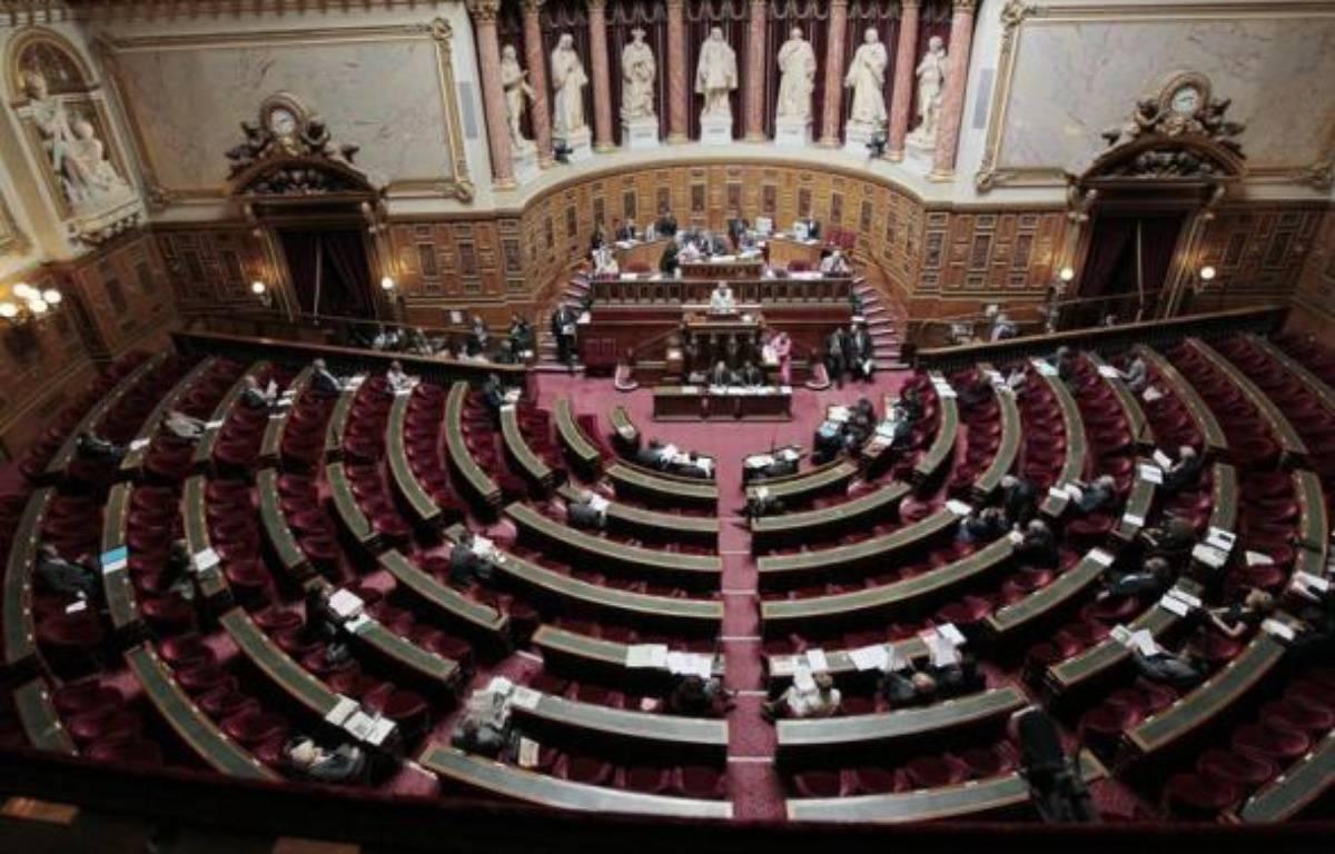 """Le Sénat a supprimé vendredi, dans le cadre du projet de loi de finances (PLF) pour 2011, un article introduit en première lecture par les députés qui visait à augmenter les plafonds du dispositif de réduction d'impôt sur le revenu dit """"Madelin"""". – Jacques Demarthon afp.com"""