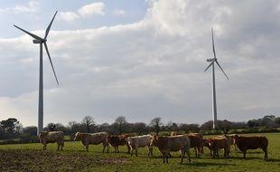 Illustration de vaches devant des éoliennes.