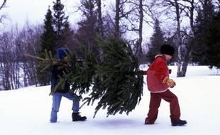Plusieurs milliers de personnes vont, chaque année, chercher leur sapin de Noël chez Ikea.