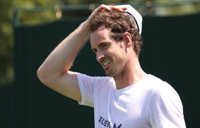 Wimbledon: Andy Murray jouera le double mixte avec une certaine... Serena Williams