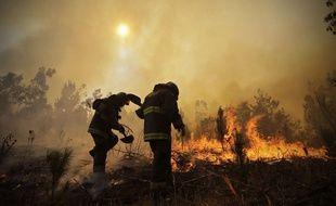 Les feux de forêt au Chili, les plus importants de l'histoire du pays, ont fait six morts parmi les pompiers et les secouristes et ravagé 190.000 hectares, le 25 janvier 2017.