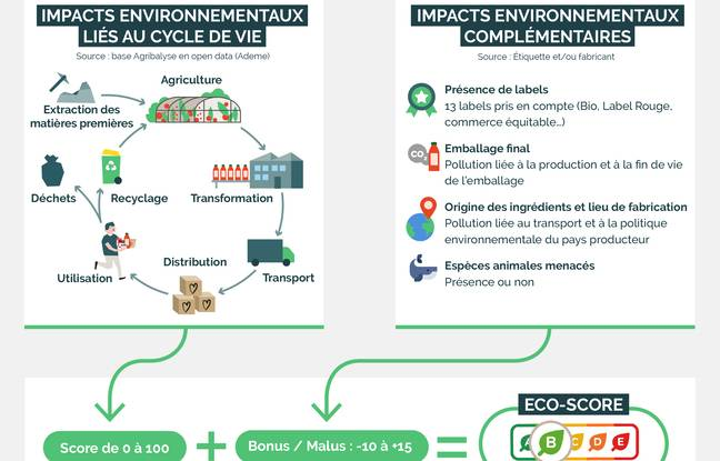 / Infographie La Fourche