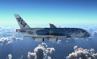 L'A380 de la compagnie All Nipon Airways dont la livrée représente une tortue hawaïenne.
