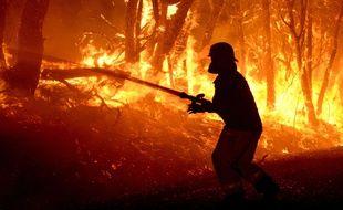 Des pompiers tentent de maîtriser un feu virulen en Australie Méridionale, le 2 janvier 2015.
