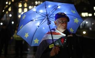 Un supporter anti-Brexit à Londres, le 14 janvier 2019.