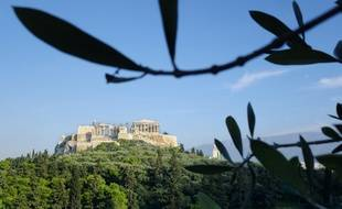 Au pied de l'Acropole, les oliviers de la colline Philopappou rappellent le lien historique qui unit la cuisine grecque à l'huile d'olive.