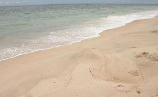 Sur les plages de Pointe Denis, à Libreville, les traces laissées par les tortues venues pondre se font de plus en plus rares.